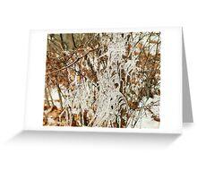 Frozen Autumn Greeting Card