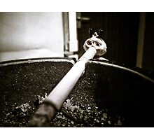 Bee Smoke Photographic Print