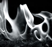 Phantom Fire by Valerie Rosen