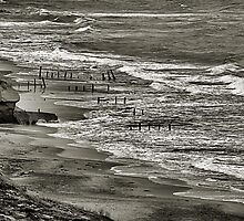Beach at Fort Funston by Bob Wall