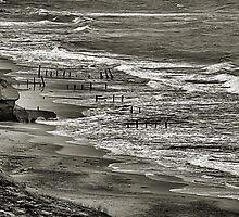 Beach at Fort Funston by Bob Wall