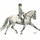 Dressage by Elizabeth Hibberd