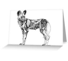 African Wild Dog Sketch Greeting Card