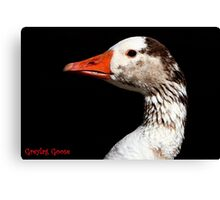 The Greylag Goose Canvas Print