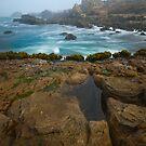 Salt Point Surf & Rocks by Zane Paxton