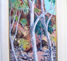 Coppins Gap-IN the Pilbara W.A by Yvonne West