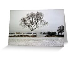 a very cold tree Greeting Card