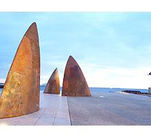 geelong sails Photographic Print
