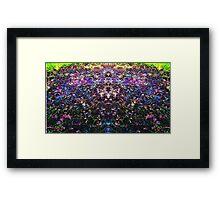 Ambivazen Glade Framed Print