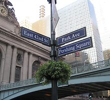 Grand Central Station by Patricia127