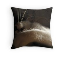 My New Baby 3 Throw Pillow