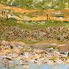 Desert Birdsong - Lake Eyre I by Kathie Nichols