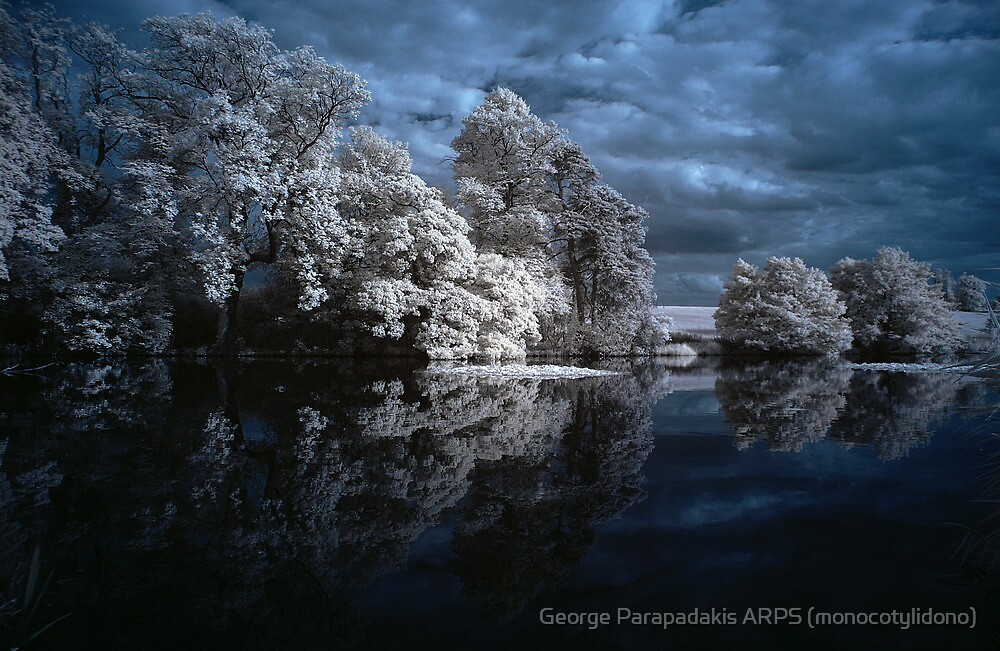 The Water Garden, Gayhurst Estate by George Parapadakis (monocotylidono)