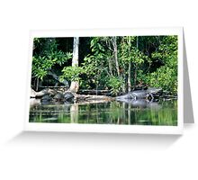On the Wacissa River Greeting Card