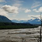 Matanuska River, Alaska by Sally Winter
