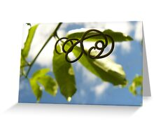Scribbles Greeting Card