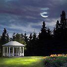 Moon Light by Gisele Bedard