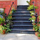 Green Stairway  by MarjorieB