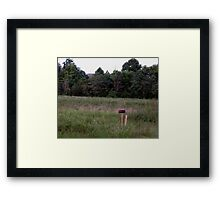 Now Why Don't She Write? Framed Print