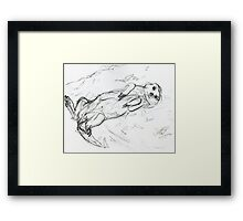 Meercat Sunbathing. Framed Print
