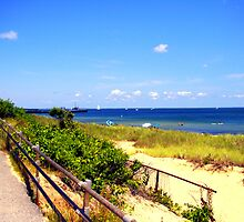 Oak Bluffs Beach 3 by Annee Olden