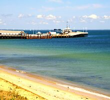 Oak Bluffs Beach 4 by Annee Olden