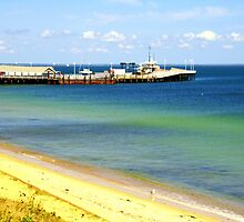 Oak Bluffs Beach 5 by Annee Olden