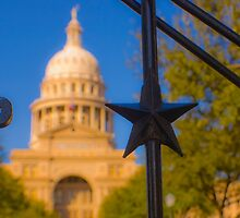 The Lone Star Capitol by Roschetzky