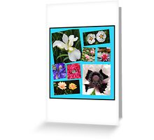 Irises and Poppies - Summer Flowers Collage Greeting Card