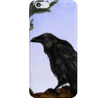 Hugin and Munin iPhone Case/Skin