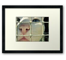 I'm innocent, the dog did it. Framed Print