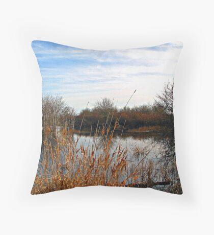 ~ Wetlands ~ Throw Pillow