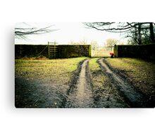 Dunham Park, cold winters day. Canvas Print