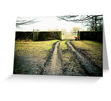Dunham Park, cold winters day. Greeting Card