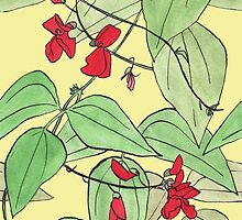 Scarlet runner beans by Yael Kisel