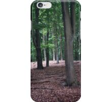 All Peace on Earth iPhone Case/Skin