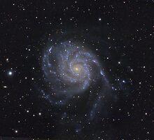 "Spiral galaxy (M101 ""Pinwheel"") by Igor Chekalin"