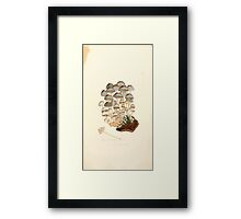 Coloured figures of English fungi or mushrooms James Sowerby 1809 0441 Framed Print