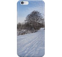 A Pale Blue Snowday  iPhone Case/Skin
