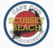 Scusset Beach - Cape Cod Massachusetts by IntWanderer