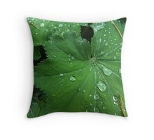 Water drops on leaves Throw Pillow