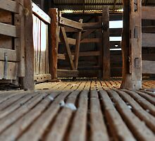 Floor of Shearing Shed, Tocumwal, Australia by Georgina James