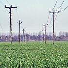 Telepoles by Paul Hickson