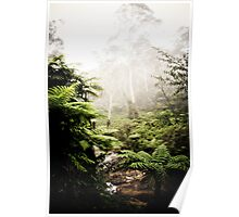 Leura Cascades - Blue Mountains Poster