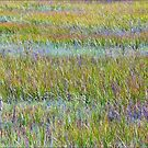 A Sea of Grasses: Waves of Color by paintingsheep