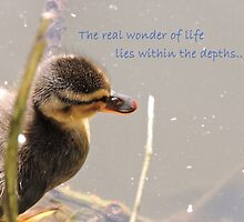 Within The Depths (Duckling)  by CreativeEm