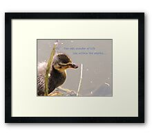 Within The Depths (Duckling)  Framed Print
