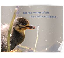 Within The Depths (Duckling)  Poster