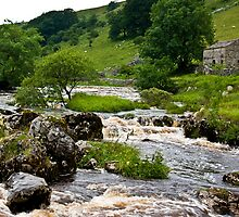 River Wharfe at Yockenthwaite  #3 by Trevor Kersley