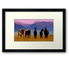 Loneliest Road In America Wild Horse Herd  Framed Print